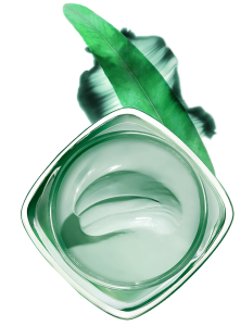 tonerde-skincare-ingredient-eucalyptus-green